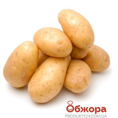 Картофель белый вес. – ИМ «Обжора»