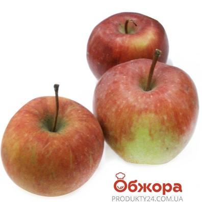 Яблоки Чемпион вес. – ИМ «Обжора»