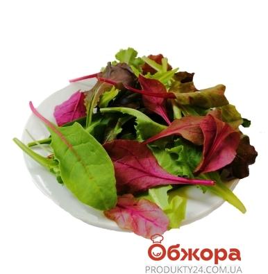 Зелень Салат Мікс (Рукола + Бебі Шпинат + Мангольд крас.зел) 125г – ІМ «Обжора»