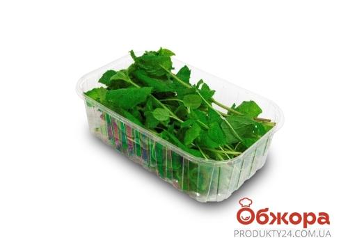 Базилик зелёный (в коробке) 30 г – ИМ «Обжора»