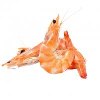 Замороженные морепродукты – интернет-магазин «Обжора»