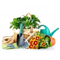 Сад и огород – интернет-магазин «Обжора»
