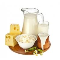 Кошерная молочная продукция – интернет-магазин «Обжора»